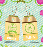 Set, collection of two natural, beautiful stickers. Group of two hanging tags with patterns Stock Photography