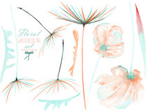 Set, collection with the watercolor isolated pink and mint flower elements and dandelion fuzzies Royalty Free Stock Photo