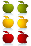 Set of color apples. Set of different color apples isolated on white. Additional vector format in EPS 8 Royalty Free Stock Photo