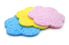 Set of color bath sponges isolated Royalty Free Stock Photo