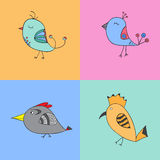 Set of color birds Stock Image