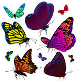 Set of color butterflies of tattoos Royalty Free Stock Photo