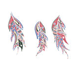Set of color feathers style zentangle Royalty Free Stock Photography