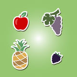 Set of color icons with fruits. For your design stock illustration