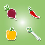 Set of color icons with vegetables Royalty Free Stock Image