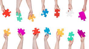 Set of color puzzle pieces in people hands Stock Images