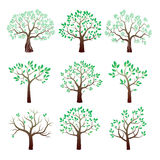 Set of color  trees. Royalty Free Stock Photos