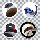 A set of colored abstract australian birds for logo. Set of colored abstract australian birds for logo, on white and black circles, isolated royalty free illustration