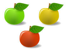 Set colored apples with leaf Stock Image