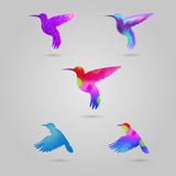 Set of colored colibri. Vector logotypes, watercolor flying birds royalty free illustration