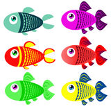Set of colored fish in cartoon style Royalty Free Stock Photo