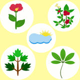 Set of colored flat natural elements. From flowers, bush, foliage, clouds Royalty Free Stock Photo
