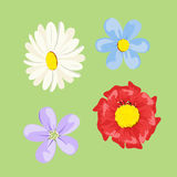 Set of colored flowers Stock Photography