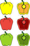 Set of colored fresh farmers peppers - Vector Royalty Free Stock Images