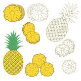Set of isolated pineapples Royalty Free Stock Photos