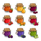 Set of colored jars with delicious homemade jam. Apple, pear, cherry and strawberry. Vector illustration royalty free illustration