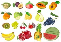 Set of colored juicy fruits on white background. Vector illustration. Stock Photo