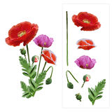 Set of colored mosaic poppies on white background. easy to modify. Vector illustration Stock Photos