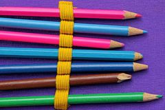 Set of colored pencils in an open box Stock Image