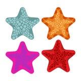 Set colored starfish. Animals of ocean. Vector illustration Stock Photos
