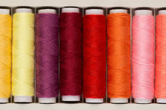 Set of colored threads for sewing Stock Images