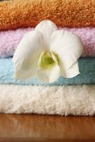 Set of colored towels Stock Image