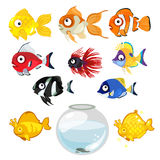 Set of colored tropical aquarium fish and bowl. Large set of multi-colored tropical aquarium fish and bowl on white background Royalty Free Stock Image