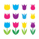 Set of colored tulip icons Stock Image