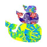 Set with colored whales. On white, background of mammals Royalty Free Stock Photos