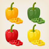 Set of Colored Yellow Green Orange and Red Sweet Bulgarian Bell Peppers, Paprika. Vector illustration. Royalty Free Stock Photos