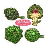 Set of colorful artichokes Stock Photo