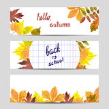 Set of colorful autumn banners with watercolor leaves. Royalty Free Stock Images