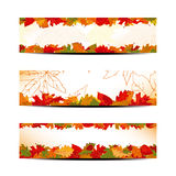 Set of Colorful Autumn Leaves Banner royalty free stock images