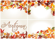 Set of colorful autumn leaves illustration Stock Images
