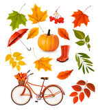 Set of colorful autumn leaves and objects. Royalty Free Stock Photos