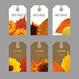 Set colorful autumn stickers Royalty Free Stock Images