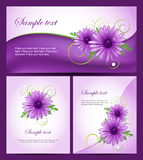 Set of colorful banners with purple daisy flowers. Easy to edit. Perfect for invitations or announcements Royalty Free Stock Images