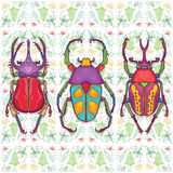 Set of 3 Colorful Beetle Bugs, Insect on Endless Leaf Background Royalty Free Stock Photo