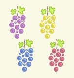 Set Colorful Bunches of Grape Stock Photography