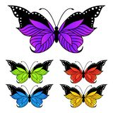 Set of colorful butterflies Stock Photo