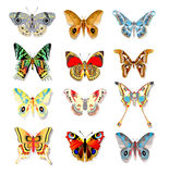Set of colorful butterflies on a white background Royalty Free Stock Photography