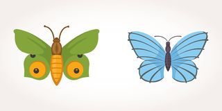 Set of colorful Butterfly Vector Design Illustration. summer insect Stock Photos