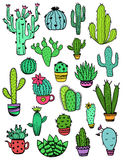 Set Of Colorful Cactus Icons. Royalty Free Stock Photography