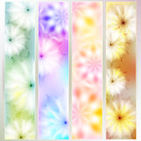 A set of colorful cards. With floral design. Pastel range Stock Photos