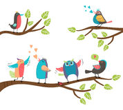 Set of colorful cartoon birds on branches. Set of cute colorful cartoon birds perched on branches with a blackbird  lovebird  owl  thrush  robin singing and Royalty Free Stock Images