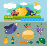Set of colorful cartoon fruit icons vector illustration. Exotic group diet vegetarian food mix natural fresh design. Healthy sweet summer nutrition Stock Illustration