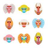 Set of colorful cartoon monkey faces. Royalty Free Stock Image