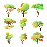 Set of colorful trees different shape with leaves vector illustration