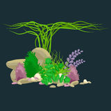 Set  colorful corals and algae, Vector underwater flora, fauna. Set of  colorful corals and algae on a dark background. Vector underwater flora and fauna Royalty Free Stock Photography