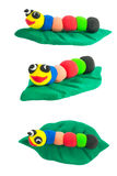 Set of colorful Cute worm on gren leaf isolated background Royalty Free Stock Photography